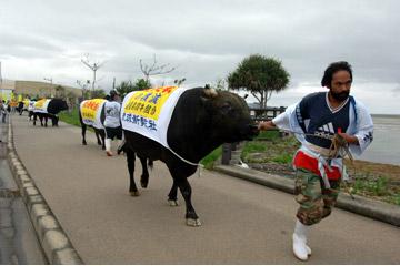 牛の道ジュネー